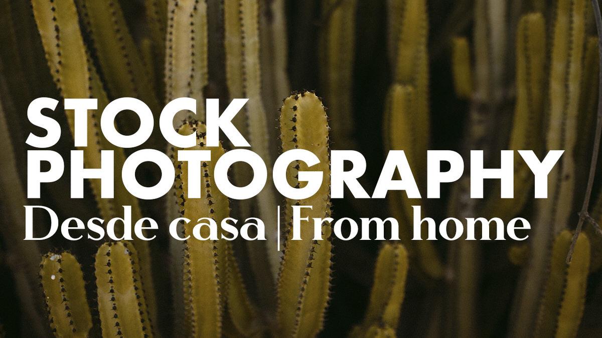 Lee más sobre el artículo Fotografía de Stock desde casa